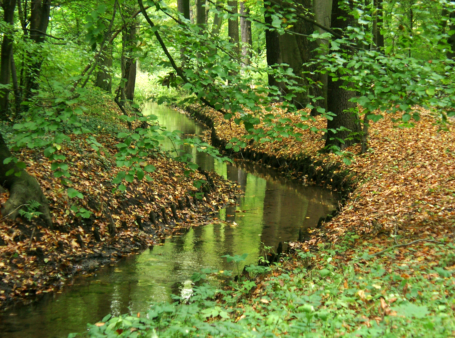 Barnim Nature Park and important research institutions in Berlin-Buch